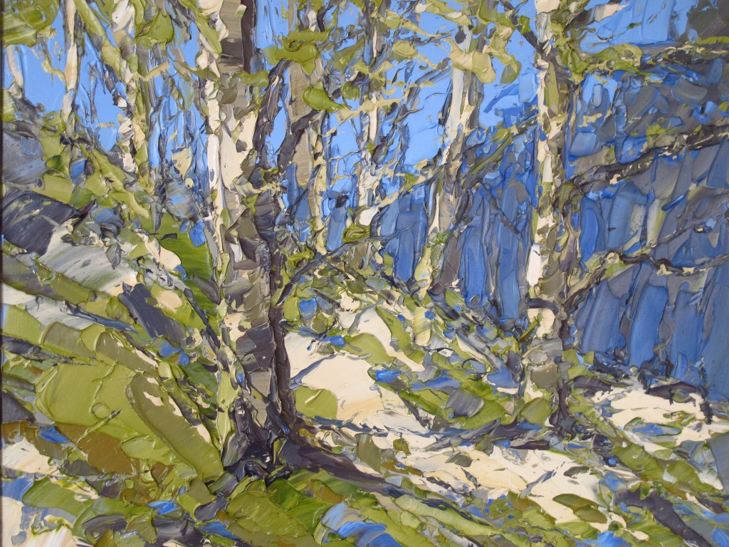 Nantgwynant woods 50x60cm