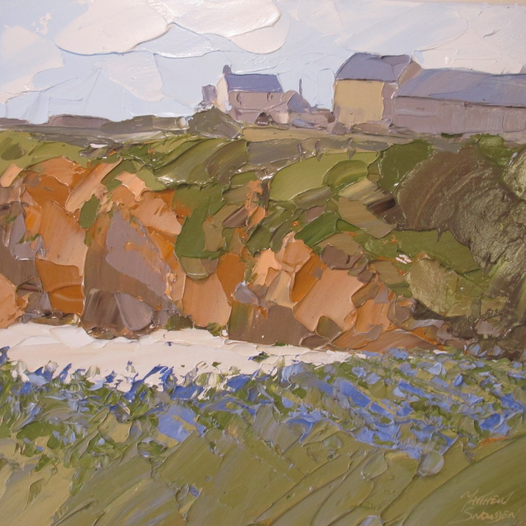 Bluebells, Porth Trecastle 40x40cm