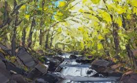Afon Conwy Betws-y-coed 60x60cm