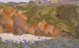 Bluebells, Porth Trecastle 40x40cm