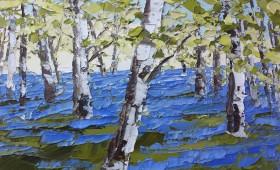 Bluebells and Birch 70x70cm